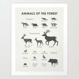 Animals of the Forest Art Print