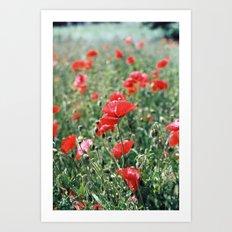 Flower portrait V Art Print
