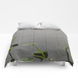 Water Lily Bloom with Lily Pads Comforters