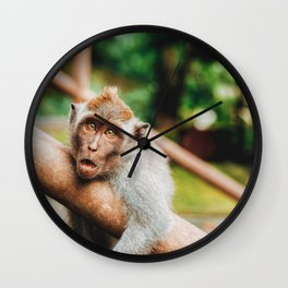 Cute Monkey (Color) Wall Clock