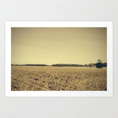Lonely Field in Brown Art Print