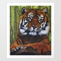 charmaine Art Prints featuring Tiger print by Charmaine Diedericks