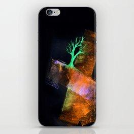 Steiner iPhone Skin