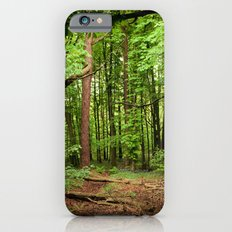 Glade of my Dreams  Slim Case iPhone 6s