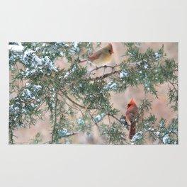 Winter Pair: Cardinals Rug
