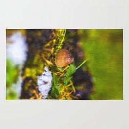 Small Mushroom Rug