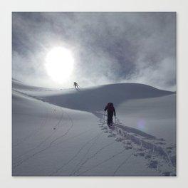 Alaska Denali Backcountry Ops Canvas Print