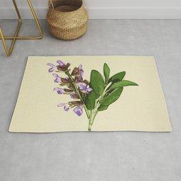 Vintage botanical print - Clary Sage Rug