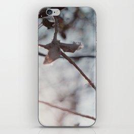 hanging iPhone Skin