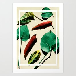 leaves over pale background with frame Art Print