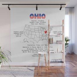 Ohio Wall Mural