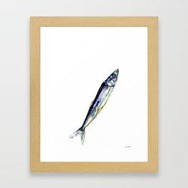 Smelt Framed Art Print