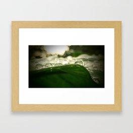 Rain Drop Therapy Framed Art Print