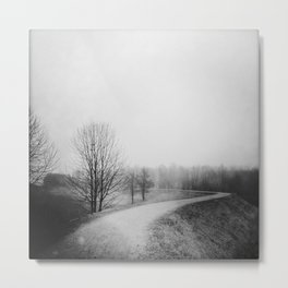 Landscape stories_Path Metal Print