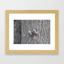 new wings Framed Art Print
