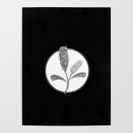 Banksia pt. 2 Poster