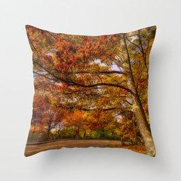 Fall Road,Chestnut Hill, Massachusetts Throw Pillow