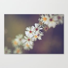 Enigmatic Canvas Print