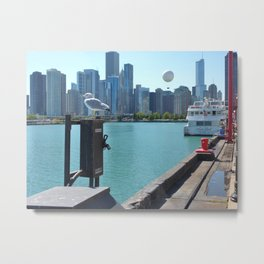 A Chicago sea gull perched on Navy Pier Metal Print