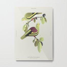 Sri Lanka Green-pigeon (dsc) Metal Print