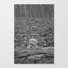 Nature Talks Back Canvas Print