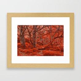 Ruby Moss Forest Framed Art Print