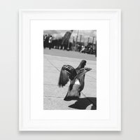 pigeon Framed Art Prints featuring Pigeon by Mark Spence