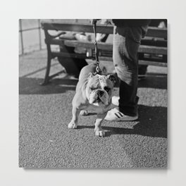 Who You Looking At? Metal Print