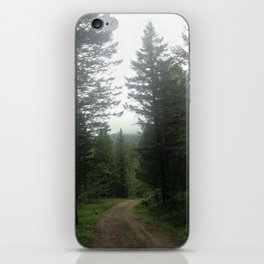 The Path is Made by Walking iPhone Skin