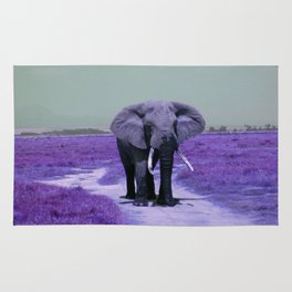 African Bull Elephant in Purple Rug