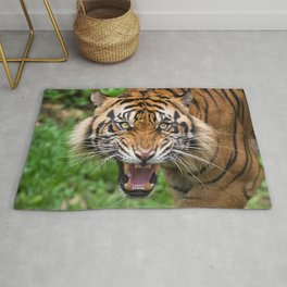 Fascinating Spectacular Fearsome Jungle Tiger Roaring At Camera Face Close Up Ultra HD Rug