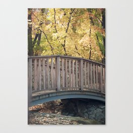 An Autumn Walk in the Park Canvas Print