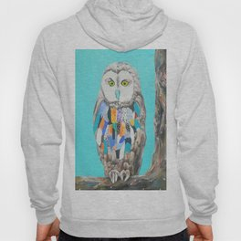 Imaginary owl Hoody