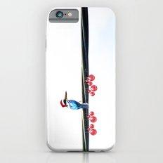 Tis The Season - Kingfisher iPhone 6s Slim Case