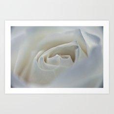 White Rose 9522 Art Print