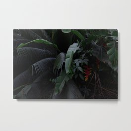 Lush Tropical Jungle Metal Print
