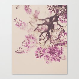 Purple Wisteria Dreams Canvas Print