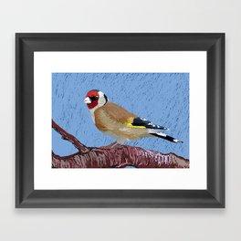European Goldfinch Framed Art Print