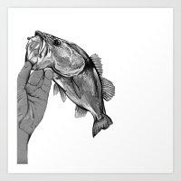 bass Art Prints featuring Bass  by KylePage