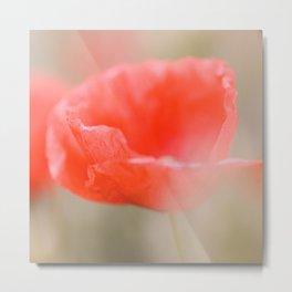 Poppies poetry Metal Print