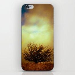 English landscape with tree and rainbow, UK iPhone Skin