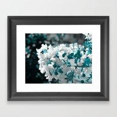 Popcorn flowers Framed Art Print