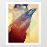 crow Art Prints featuring Crow by Victor Vercesi