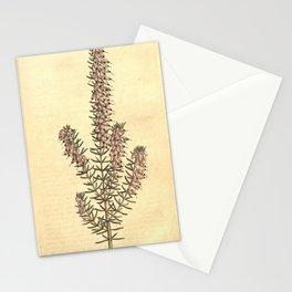 Flower 471 erica mediterranea Mediterranean Heath19 Stationery Cards