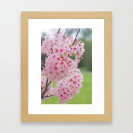 Pink is my signature color. Framed Art Print