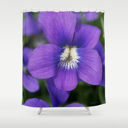 Violets Are Not Blue Shower Curtain