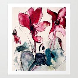Alpenveilchen Art Print
