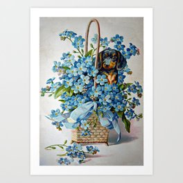 Dachshund and Forget-Me-Nots Art Print