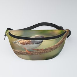 The wonderful african finch Fanny Pack