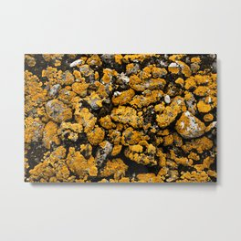 Gold Stone Mold Metal Print